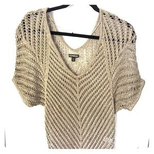 Express double V open knit sweater